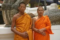 temple, temple, religion, priest, monk, person,