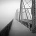 the bridge by 51e