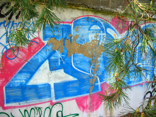Graffiti Through the Pines