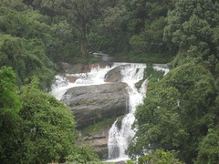 nature reserve, waterfall, rainforest, river, body of water, watercourse, ravine, state park, water resources,