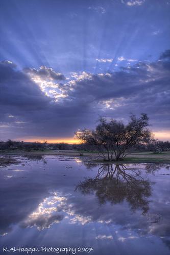light lake reflection tree slr nature water rain clouds sunrise canon lens eos usm 1855mm khalid efs hdr f3556 kuwson alhaqqan