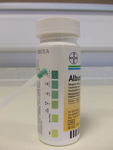Albustix- Testing For Protein