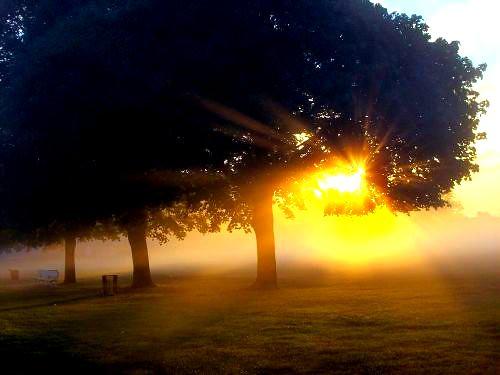 trees sky sun mist field grass geotagged rays bandcamp seniorsunrise geo:lat=4073256 geo:lon=73445663 ccctd