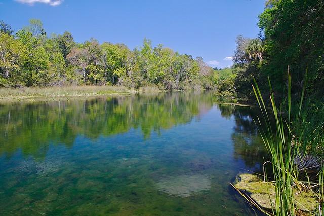 Alexander Springs Ocala National Forest Florida