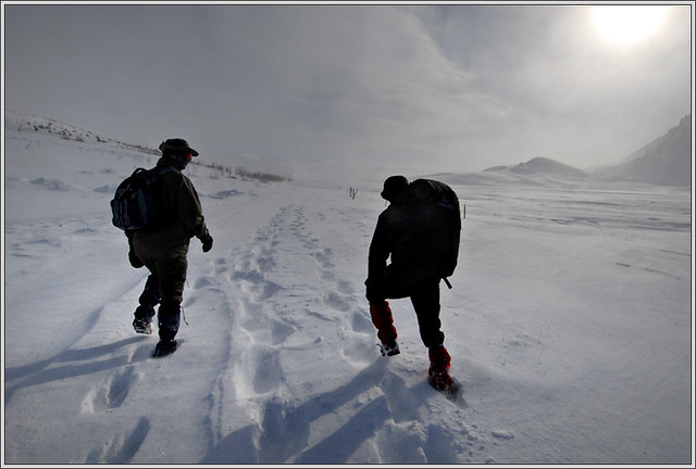 walking in the snow - photo #22