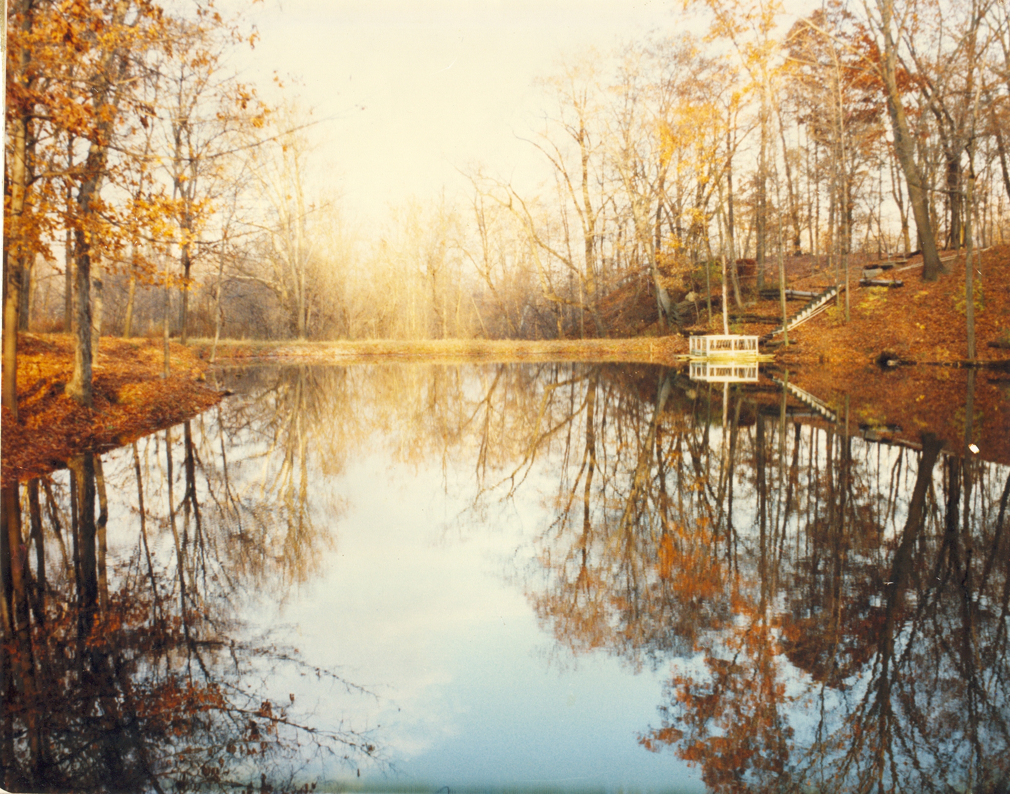 Blue autumn trees sky brown lake art fall nature water 35mm wow