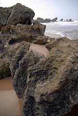 Rocks, plenty of them...