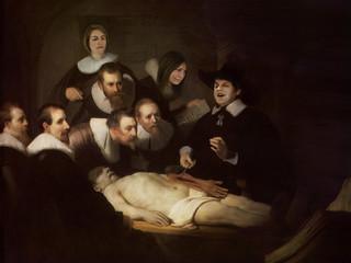 experimental surgeon