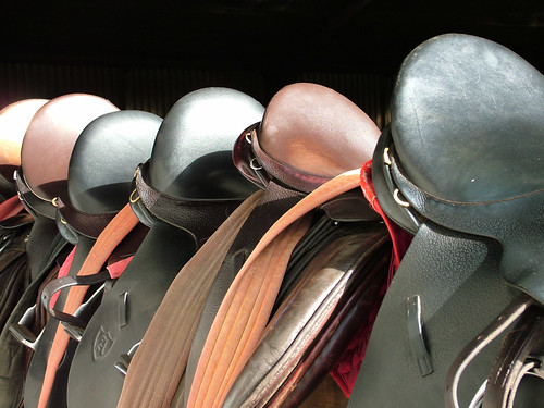 Saddles at Gill Lane 2