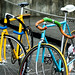 Pair 'o bikes color