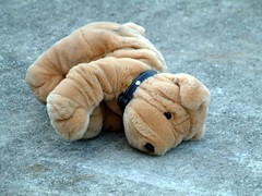 hand(0.0), puppy(0.0), produce(0.0), food(0.0), animal(1.0), textile(1.0), dog(1.0), pet(1.0), mammal(1.0), shar pei(1.0), plush(1.0), stuffed toy(1.0), organ(1.0),