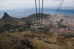 Parco nazionale di Table Mountain