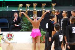 floor gymnastics(0.0), gymnastics(0.0), gymnast(0.0), performing arts(1.0), artistic gymnastics(1.0), rhythmic gymnastics(1.0),
