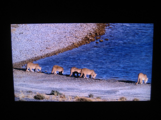 discovery planet earth - photo #22