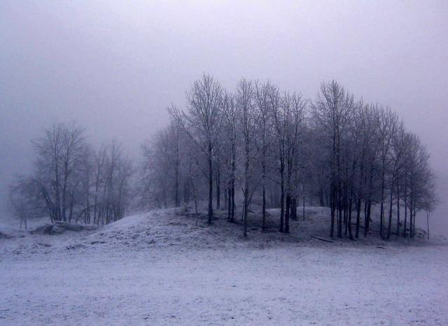 Say goodbye to winter 2, Canon DIGITAL IXUS II