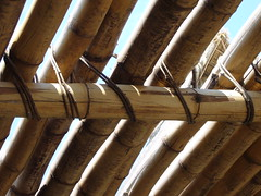 bamboo, wood, beam,