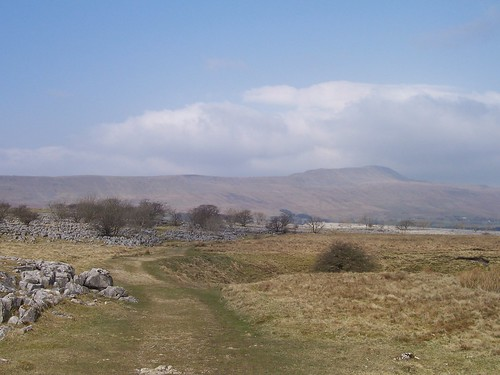 Ingleborough Nature Reserve