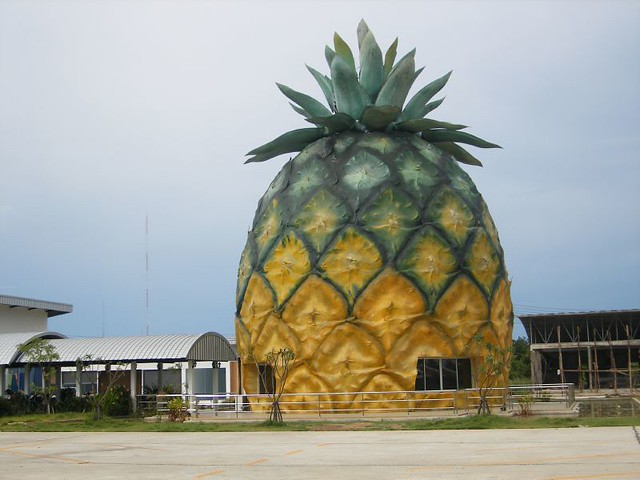 Pineapple Palace, Fujifilm FinePix F460