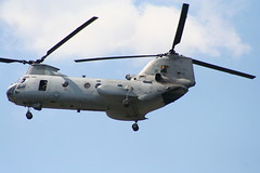 boeing ch-47 chinook(0.0), aircraft(1.0), aviation(1.0), helicopter rotor(1.0), helicopter(1.0), vehicle(1.0), military transport aircraft(1.0), military helicopter(1.0), boeing vertol ch-46 sea knight(1.0), air force(1.0),