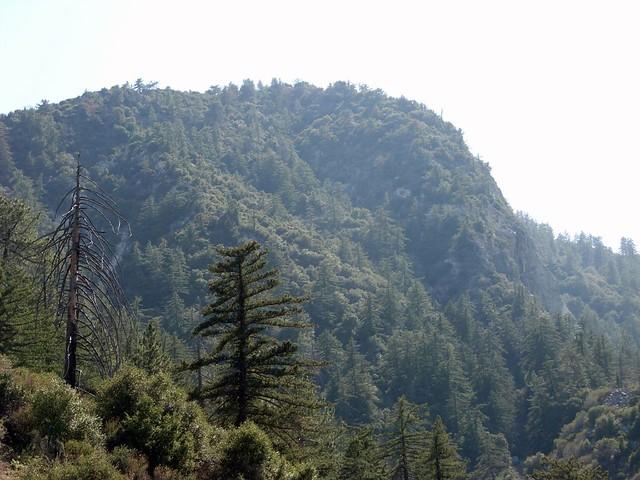 Strawberry Peak Take 2 033