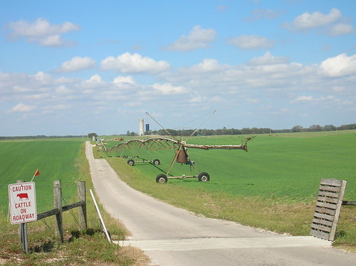 landscape florida farm fl archer