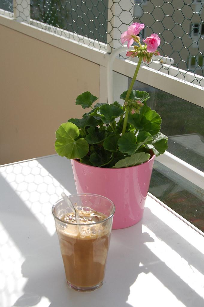 Pelargon och iskaffe