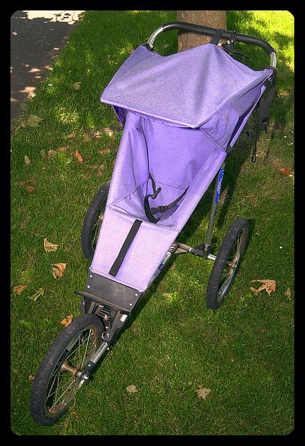 Jogging Stroller For Sale Flickr Photo Sharing