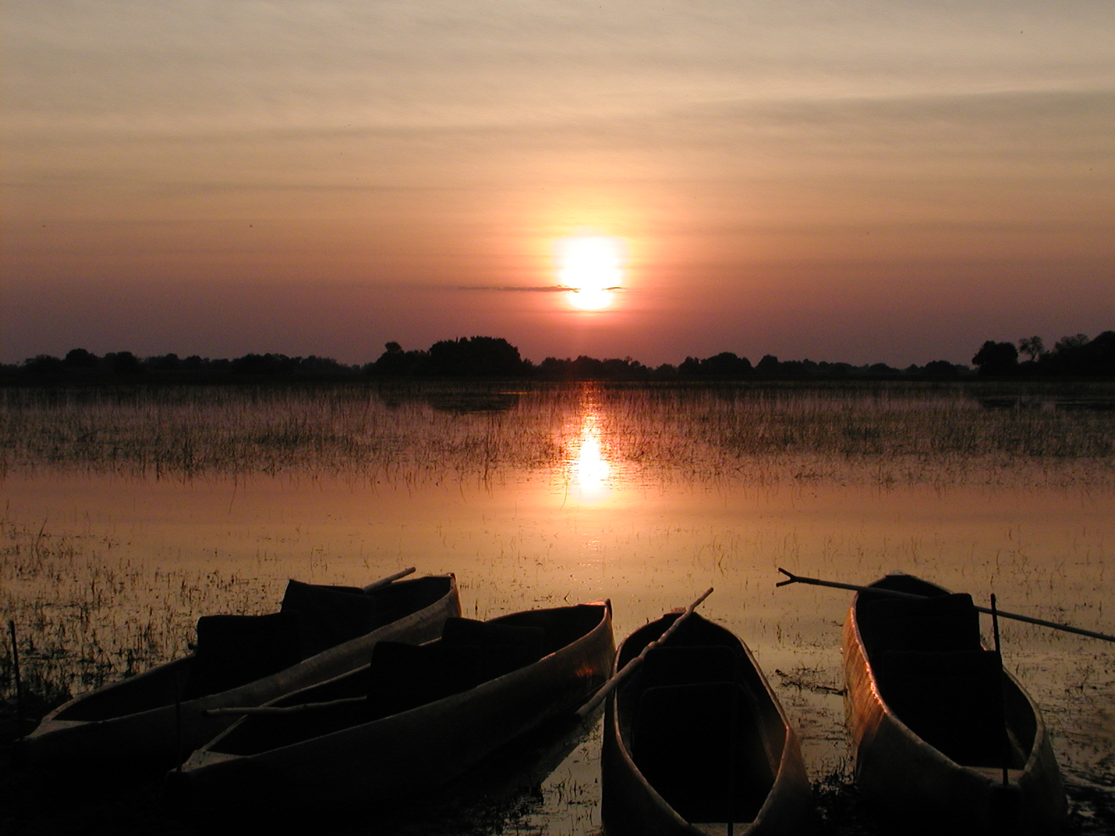 Okavango Delta sunset