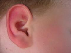 skin, ear, cheek, close-up, pink, organ,