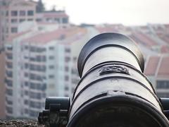 Cannon at Monaco