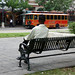 San Antonio Trolley Tours , San Antonio