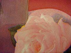 rosy rosettes