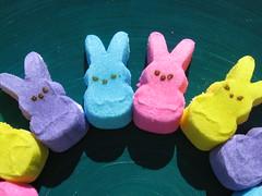 textile(0.0), dessert(0.0), plush(0.0), stuffed toy(0.0), peeps(1.0), food(1.0), toy(1.0),