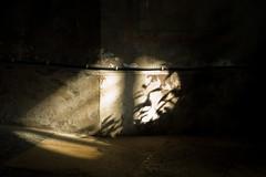 Licht en schaduw in de kerk van Vervins