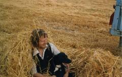 prairie, agriculture, farm, straw, hay, field, plant,