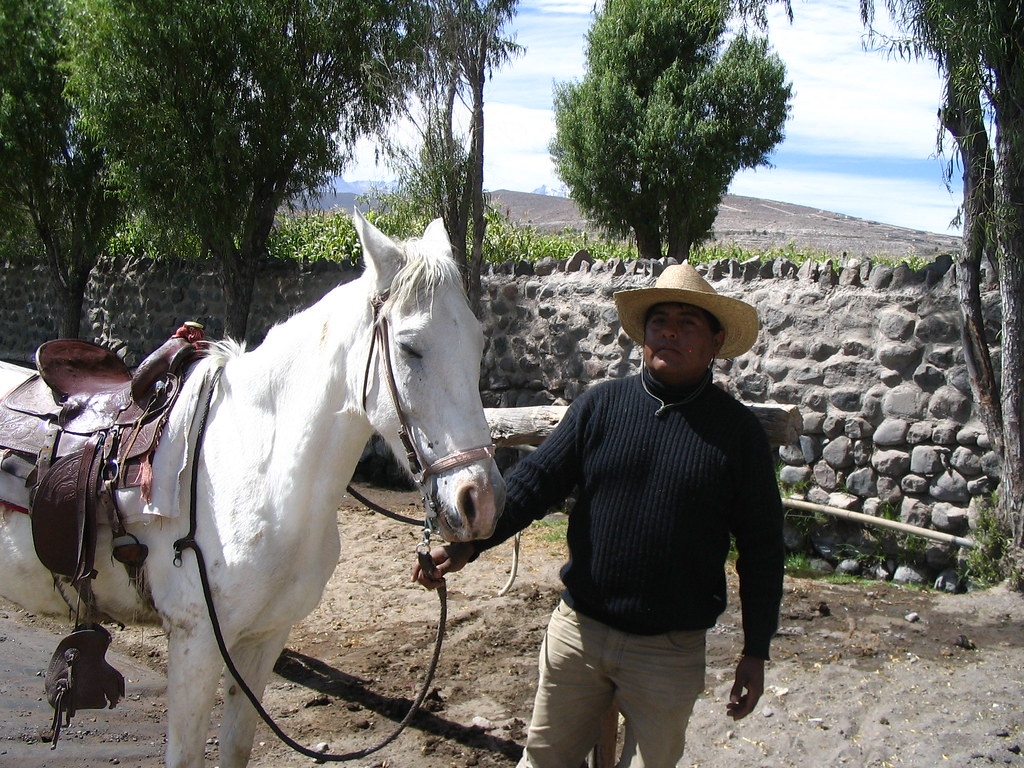 Horse rider, Peru