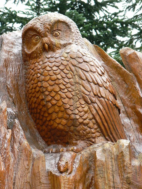 Carved owl on grouse mountain vancouver bc flickr