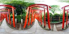 Narrow path to Inari shrine