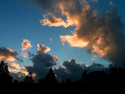 sunset sky house holland tree netherlands amsterdam silhouette clouds evening nederland 荷兰 阿姆斯特丹
