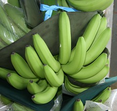 flower(0.0), plant(0.0), vegetable(1.0), cooking plantain(1.0), banana(1.0), produce(1.0), fruit(1.0), food(1.0),