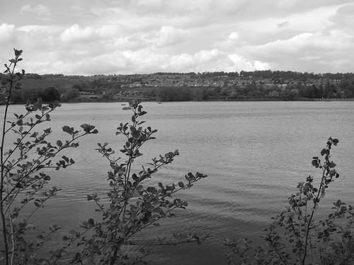 worsborough black and white