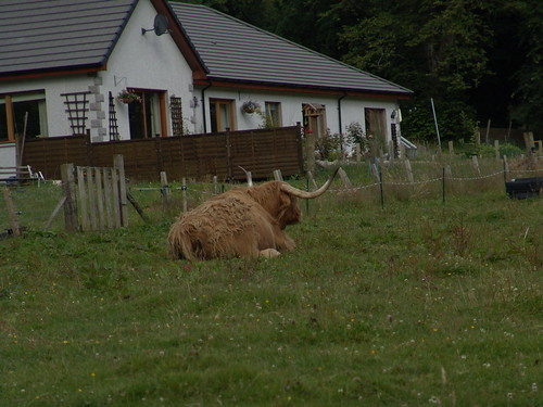 513099122 5cddfdacec Schottland
