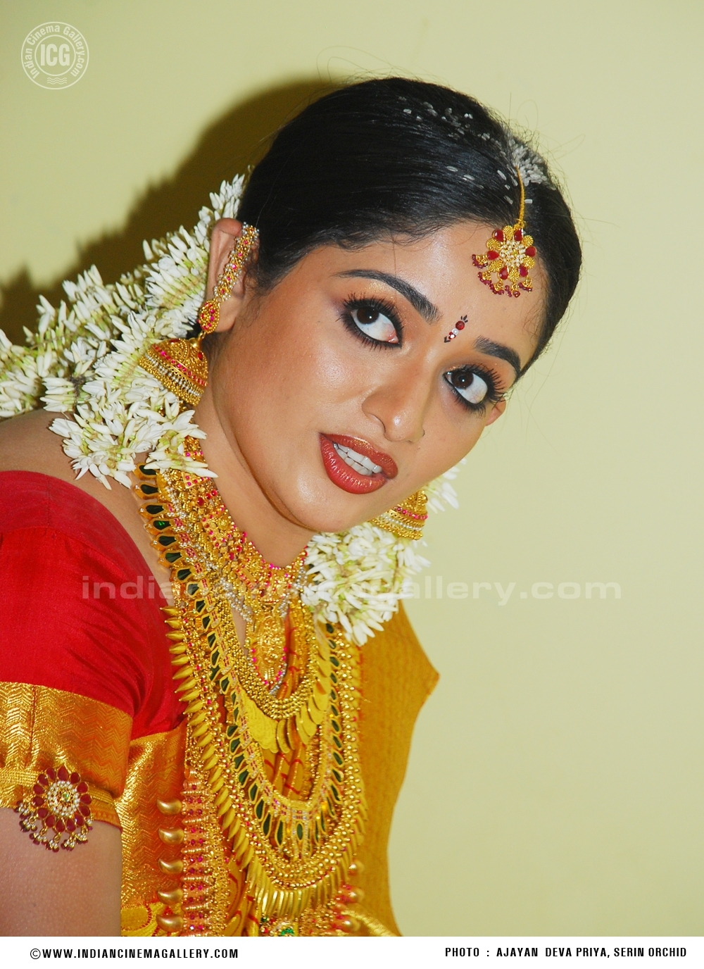 Kavya Madhavan Wedding Reception Photos At Neeleswaram