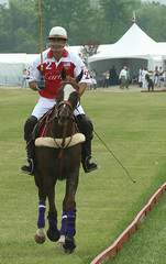 stick and ball games, animal sports, equestrian sport, sports, stick and ball sports, polo, team sport, ball game, athlete,