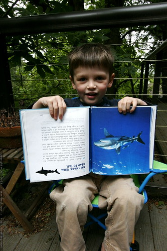 nick 'reads' us a story, upside down    MG 5571