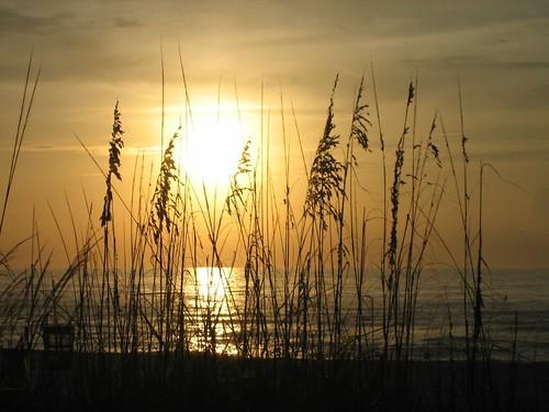 sunset sky favorite orange beach florida indianrocksbeach 100views clearwater seaoats