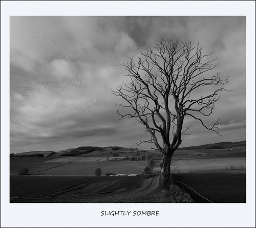Slightly Sombre