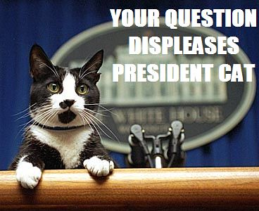 YOUR QUESTION DISPLEASES PRESIDENT CAT