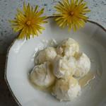 Dandelion Honey Sherbet