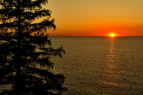 sunset orange sun lake ontario canada color tree water port niagara stcatharines lakeontario portdalhousie